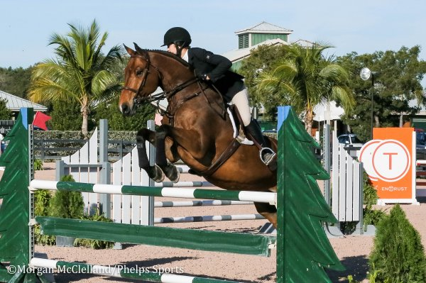 © Morgan McClelland: Mckayla Langmeier and Calberon B, orange oxer