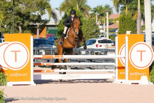 © M: Mckayla Langmeier and Calberon B, orange oxer (ACTUAL)